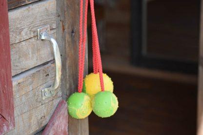 Dog Ball Toys