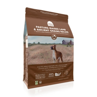 Lamb and Ancient Grains Dog Food