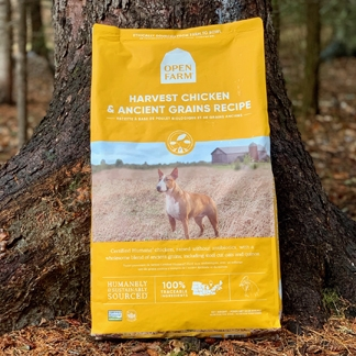 Chicken and Ancient Grain Dog Food