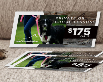 Dog Lessons Gift Certificate